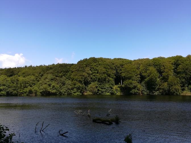 Jasmund National Park