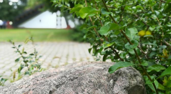Fels und Kirche